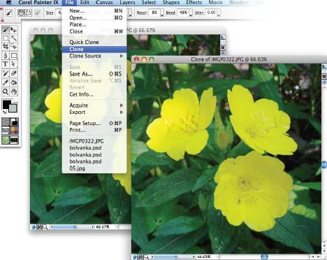 Рис. 2. Клонирование исходного изображения