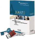 Инструментарий HASP SRM построен в архитектуре «клиент-сервер»