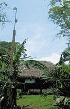 Узел RCP, который можно установить не только на высоких строениях, но ина деревьях иобеспечить электроэнергией от солнечной панели, гарантирует устой?чивую работу сInternet там, где раньше такой возможности просто не было