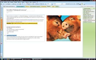 OneNote 2007 — одно из немногих приложений в составе Office 2007, пока не имеющих открытых аналогов