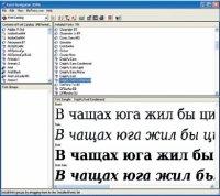 Хотя утилита Bitstream Font Navigator 2006 давно не обновлялась, она остаётся отличным инструментом. Попробовав один раз, вы уже не сможете спокойно оперировать со шрифтами через аскетичную панель управления Windows