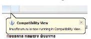 Рис.2. Режим Compatibility View обеспечит комфортный просмотр проблемных страниц