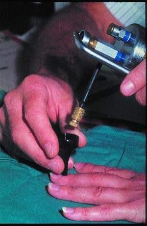 Криокосметические процедуры