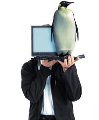 Даже если общая стоимость владения не приносит никакой выгоды по сравнению с коммерческими системами, операционная система Linux все равно обладает определенными преимуществами с финансовой точки зрения