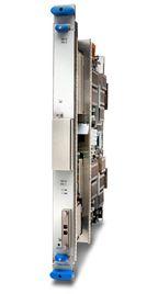 Интерфейсный модуль 100 GE ориентирован на работу в составе его маршрутизатора Juniper T1600 уровня ядра сети