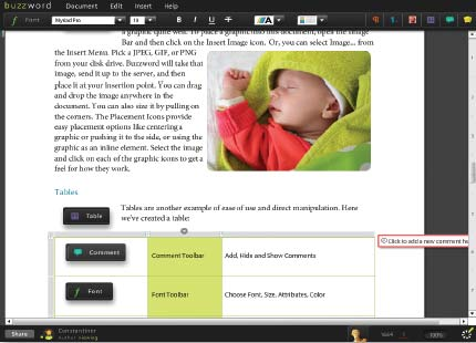 Рис. 3. Богатый пользовательский опыт работы с приложением Buzzword компании Adobe