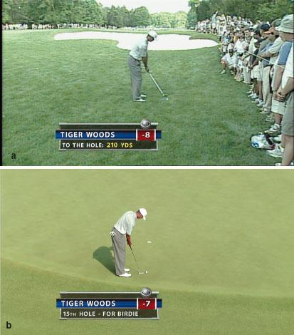 Снимки экранов для телевидения стандартной (а) и высокой (б) четкости — разница видна невооруженным глазом