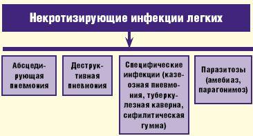 Рис. 1. Некротизирующие инфекции легких