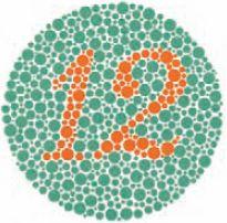 Надёжно зарекомендовавшие себя тестовые таблицы Ишихары используются во всём мире. На фрагменте № 1 (вверху) практически все видят число 12. На фрагменте № 9 (внизу) человек с нормальным зрением увидит число 74, а с дальтонизмом красного/зелёного— число 21. Вообще не различающие цветов не интерпретируют ни одного числа. Принцип и основа теста— качество и относительное расположение цветов. Приведённые таблицы не являются реальным тестом из-за специфических ограничений триадной печати. Любые тесты проводятся и анализируются лишь квалифицированными специалистами. Источник: Ishihara's Tests for Colour Deficiency, издание Kanehara Trading, права принадлежат Isshin-kai Foundation