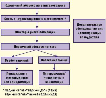 Алгоритм антимикробной терапии при абсцессе легкого