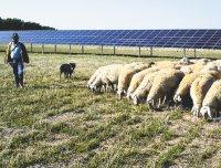 Всего лишь за час на Землю попадает такое количество солнечного света, которого достаточно для удовлетворения годовых энергетических потребностей всей планеты— задача втом, чтобы эту энергию суметь использовать