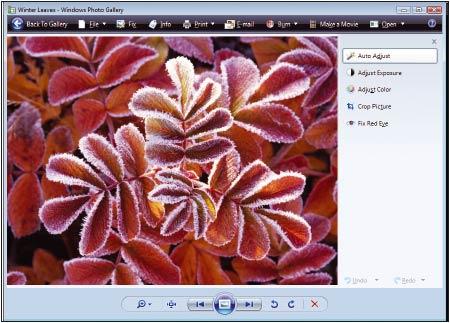 Рис. 7. Программа «Фотоальбом Windows» (Windows Photo Gallery) в составе Vista позволяет одним щелчком вносить в изображения элементарные исправления, равно как и использовать входящие в нее инструменты для обработки вручную