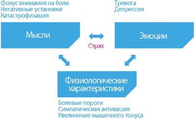Рис. 2. Взаимосвязь когнитивных, эмоциональных и физиологических характеристик