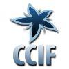 В Cloud Computing Interoperability Forum, полностью одобряя содержание манифеста, отозвали свою подпись из-за атмосферы секретности, в которой он готовился