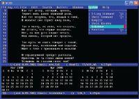 В программе Jed, как и в Emacs, можно не только редактировать тексты, но и читать электронную почту, работать с календарем и т.д.