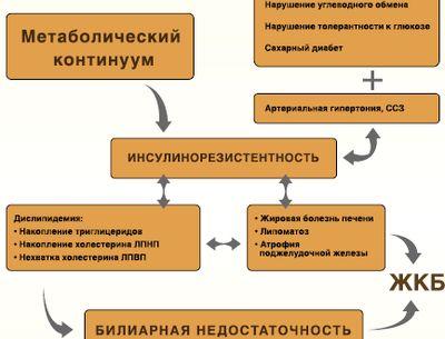 сайт диетолога миркина