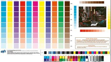 Рис. 6. Вид цветопробы, содержащей служебную информацию, шкалы Dynamic Wedge и Ugra/Fogra MediaWedge v.2.2