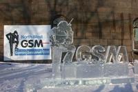 Первый коммерческий звонок стандарта GSM был сделан в сети петербургского оператора «Северо-Западный GSM» 14 лет назад