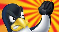 Несмотря на модульность Linux и заложенные в ее архитектуру возможности индивидуальной настройки, лишь очень немногие отваживаются использовать эти возможности, опасаясь осложнений, связанных с последующей технической поддержкой