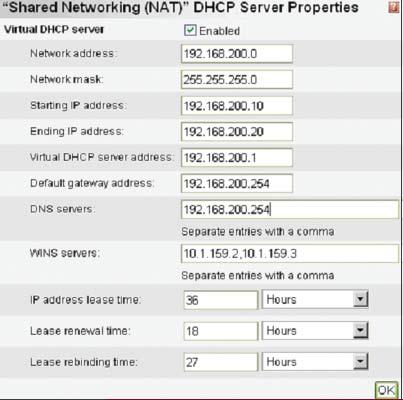 Экран 3. Определяемые пользователем в Virtual Server настройки DHCP