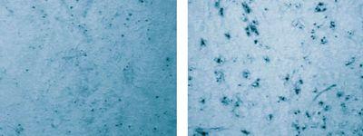 Рис. 4. Сравнение качества краскопереноса с помощью высокомодульной сетки с предварительной химической обработкой (слева) и без неё (справа)