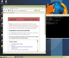 Инструментарий Lina имеет форму приложения, написанного для хостовой системы, которая виртуализует аппаратные системы вархитектуре x86. Он запускает модифицированное ядро Linux (в настоящее время версию 2.6.19) вместе со стандартной файловой системой ибиблиотеками Linux, отображенными на эквивалентные ресурсы на хостовой платформе