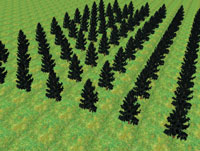 Рис. 2. Сцена, характерная для фермерских угодий, лесничеств. Растения рассажены в определенном порядке, они ухожены и примерно одинаковы, что практически соответствует действительности. В дальнейшем какие-то растения растут быстрее, какие-то погибают…