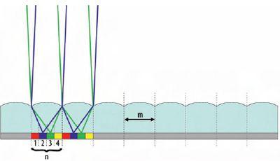 Рис. 2. За каждой цилиндрической линзой с шириной m в фокальной плоскости (фокусе) печатается n полос сюжета. Схема примера лентикулярного сюжета содержит n = 4 фазы или части сюжета. В зависимости от угла зрения видимы только лучи света, которые отображаются от соответствующего набора 1 (красный), 2 (синий), 3 (зелёный) или 4 (жёлтый) полос сюжета, — на рисунке показан переход между синей и зелёной фазами