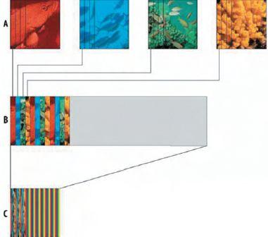 Рис. 3. При последовательной смене 4-х сюжетов (строка А; как и на рис. 2, они показаны красным, синим, зелёным и жёлтым), каждый разделяется на полосы, точно соответствующие линзе (строка В). Должно быть ровно столько полос, сколько линз на этом фрагменте. 4 сюжета дают общую картинку в 4 раза шире, чем пространство линзы. Поэтому весь сюжет должен быть сдвинут на четверть (строка С), чтобы каждой линзе соответствовала одна полоса из каждого сюжета