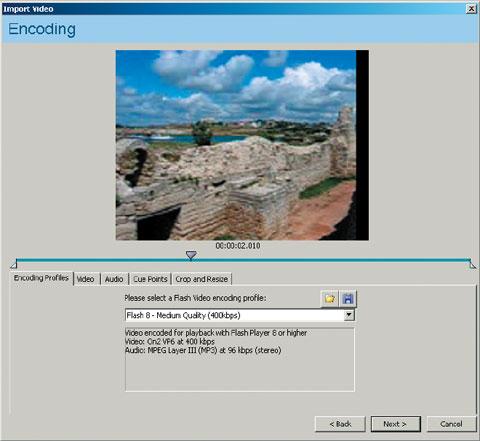 Рис. 2. Панель Video Encoding