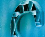 Рис. 1. Толстый эмульсионный слой, созданный чистой фотополимерной эмульсией