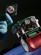 Внимание исследователей приковано к проблеме подключения к роботам живого мозга