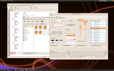 Создатели Ubuntu 8.10 Desktop Edition полны решимости сделать свою операционную систему конкурентом Mac OS по удобству использования настольных сред