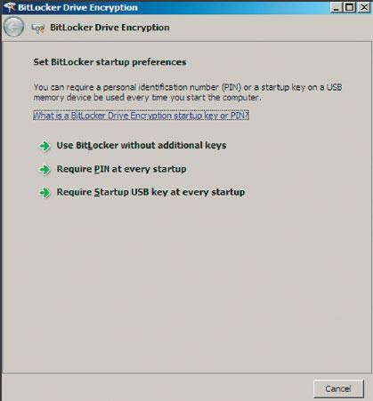 Экран 6. Выбор варианта использования BitLocker