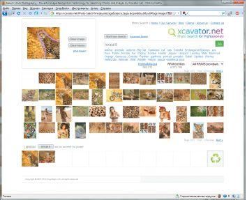 Поисковик Xcavator позиционируется как решение для профессионального поиска